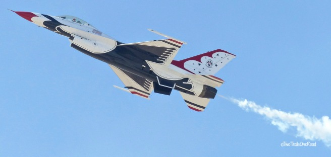Zoo and AirShow April2016 886 - Copy